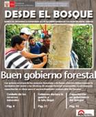 banner_revista_desde_el_bosque_i