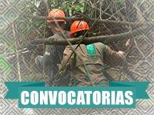 icono_convocatoria